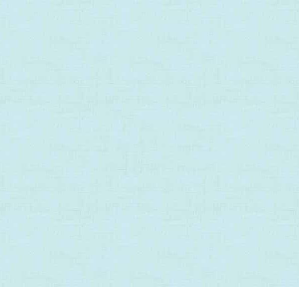 1473_B2_Linen Texture